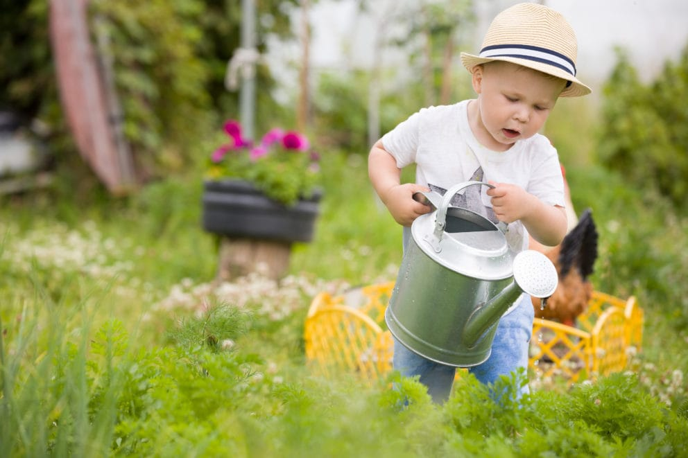 icosawater wateringcan little boy
