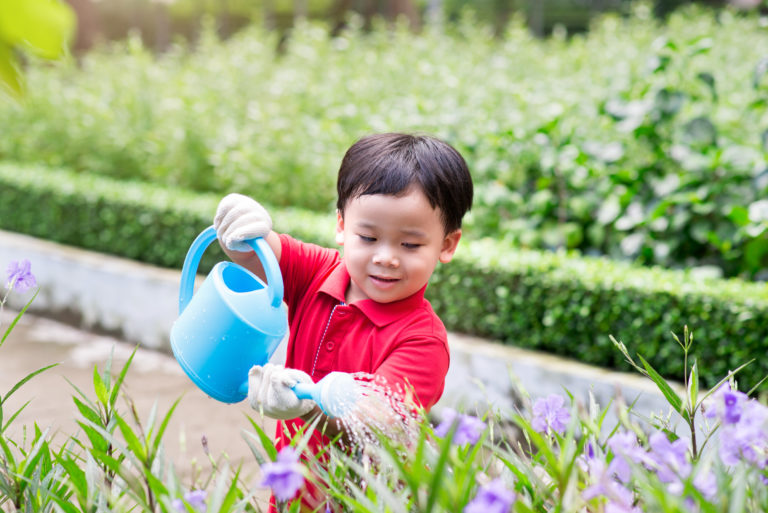 5,years,old,asian,boy,in,his,flower,garden,